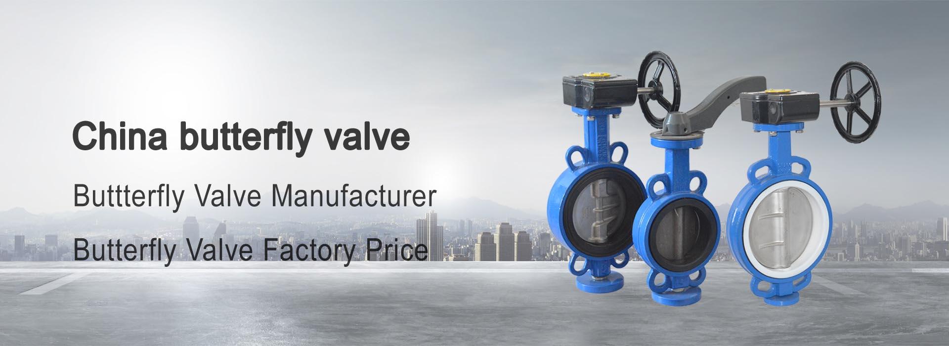 butterfly valve 1